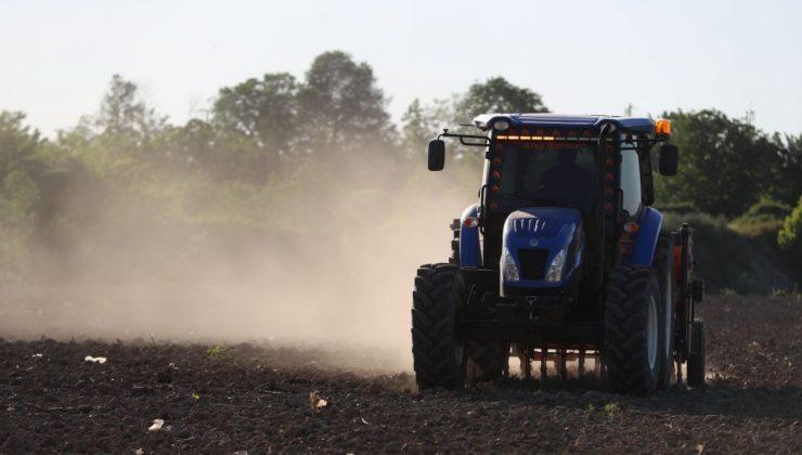 Endüstriyel kenevirin ikinci üretim sezonu başladı