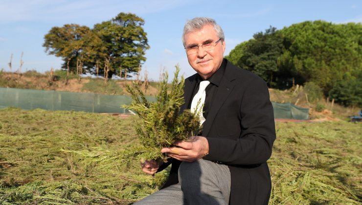 Tarımsal ürün çeşitliliği artıyor  Vadide 150 dekar biberiye hasadı tamam