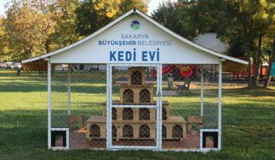 Büyükşehir Belediyesi'nden Kedi Evleri